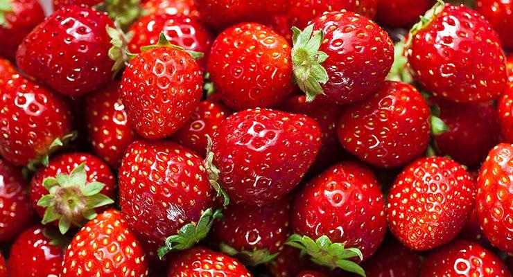 Strawberry bukanlah satu-satunya jenis BUah Berry ada lebih puluha jenis dari jenis buah berkelas semak ini. Salah satu yang paling