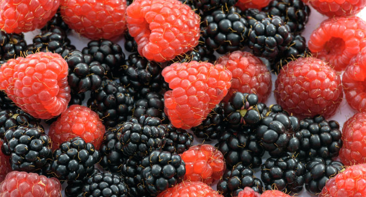 Jenis-Jenis Buah Berry dan Manfaat Bagi Sehetana Rasp Berry