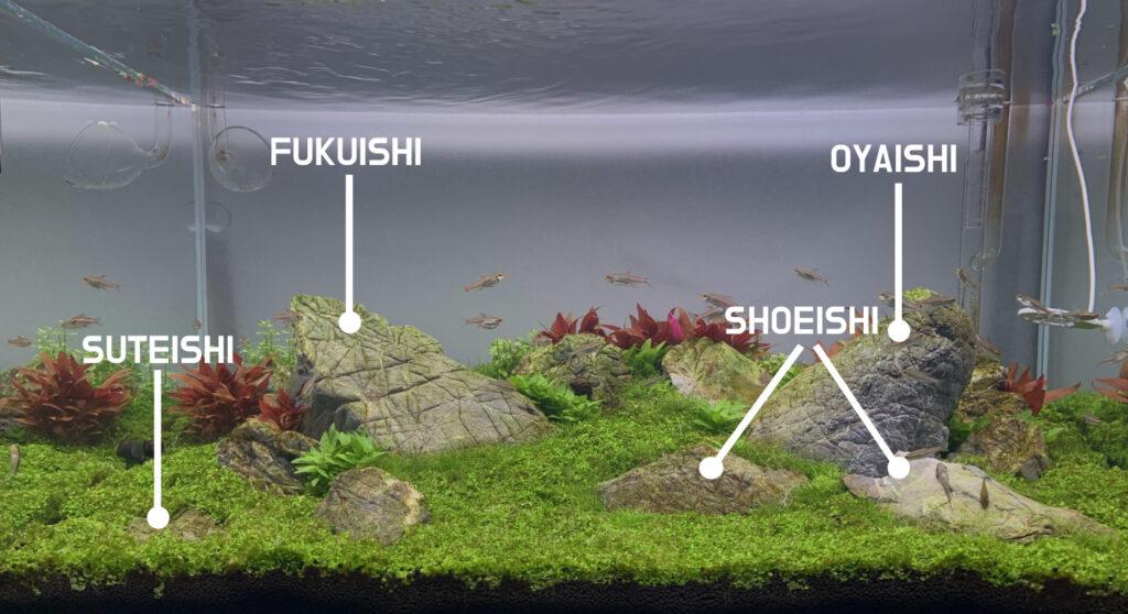 Konsep Iwagumi Style di Aquarium Aquascape yang terbaru dan keren