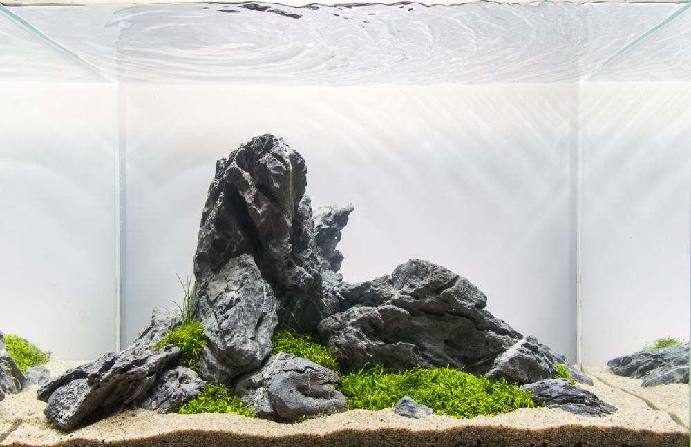 Model Aquascape Iwagumi yang keren